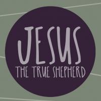 True Shepherd